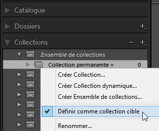 Panneau Collections - Définir une collection permanente comme collection cible