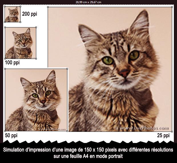 Simulation d'impression d'une image de 150 x 150 pixels avec différentes résolutions