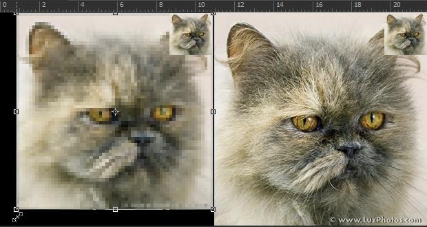 Redimensionnement d'une image : calque classique et calque dynamique
