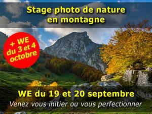 Stages photo de nature dans les Pyrénées les weekends du 19 et 20 septembre et du 3 et 4 octobre
