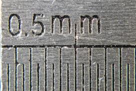 Illustration du grandissement maximal (0,68x) en Macrophotographie avec un APN Compact Olympus TG4 (focale 100mm)