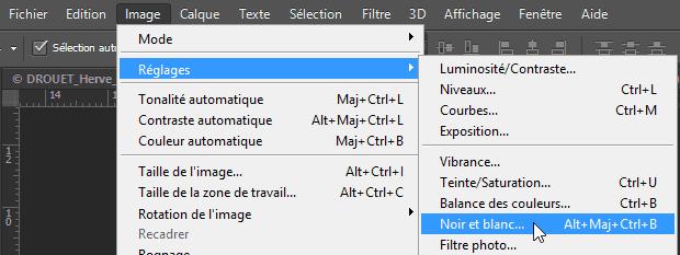 """Conversion d'une photo couleur en noir et blanc dans Photoshop par le menu """"image - Réglages - Noir et blanc"""""""