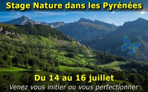 Stage photo nature dans les Pyrénées sur 3 jours - Juillet 2017