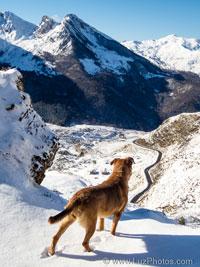 Stage photo d'hiver dans les Pyrénées - Février 2019