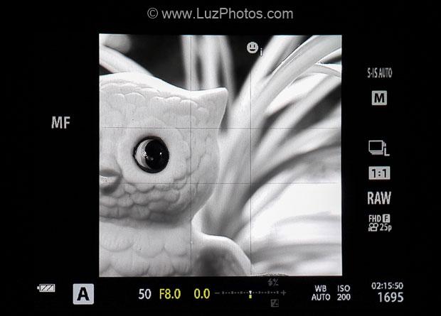Aperçu direct dans le viseur électronique des réglages choisis sur l'appareil photo (format carré en noir et blanc)