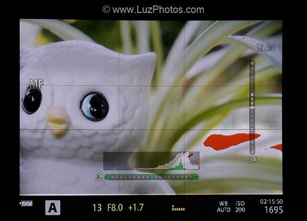 Aide à l'exposition sur un viseur électronique : affichage de l'histogramme et de l'alerte de surexposition
