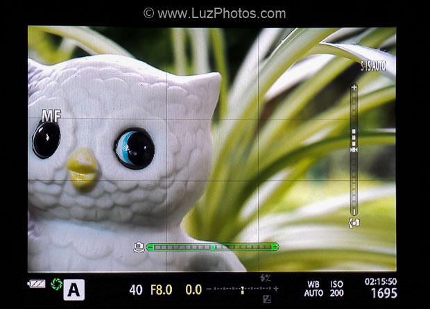 Affichage dans le viseur électronique d'un horizon virtuel pour ajuster l'assiette gauche-droite et avant-arrière