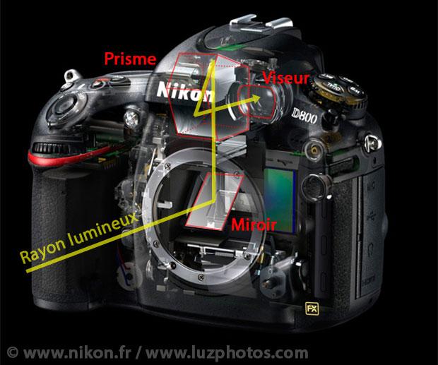 Système de visée optique : trajectoire d'un rayon lumineux sur un appareil photo reflex (passage par le miroir et le prisme avant d'arriver au viseur)