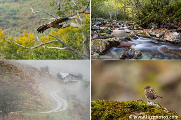 Stage photo d'automne en montagne dans les Pyrénées