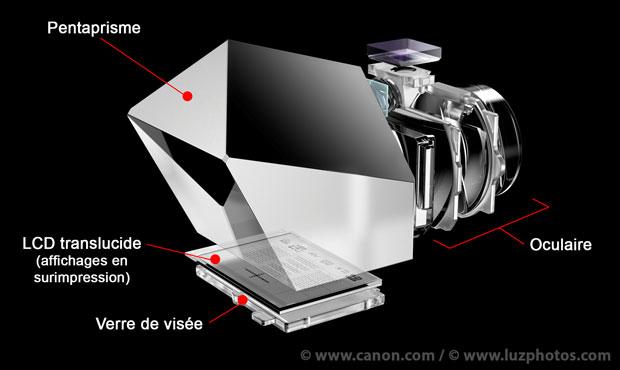 Confort de visée d'un viseur optique - Schéma de coupe du système de visée du Canon EOS 7D mark II