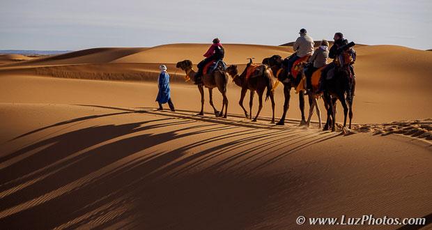 Voyage photo au Maroc - Traversée des dunes à dos de dromadaires