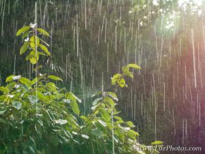 Photo en hiver - Se protéger du froid, de l'humidité et de la pluie (photo d'illustration, forte pluie)