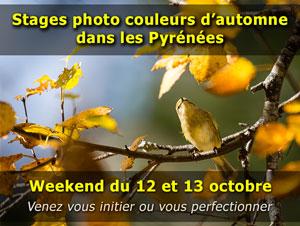 Stage photo nature sur le thème de l'automne dans les Pyrénées - weekend du 12 et 13 octobre 2019
