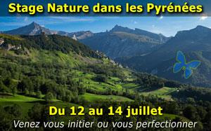 Stage photo nature dans les Pyrénées sur 3 jours - Juillet 2019