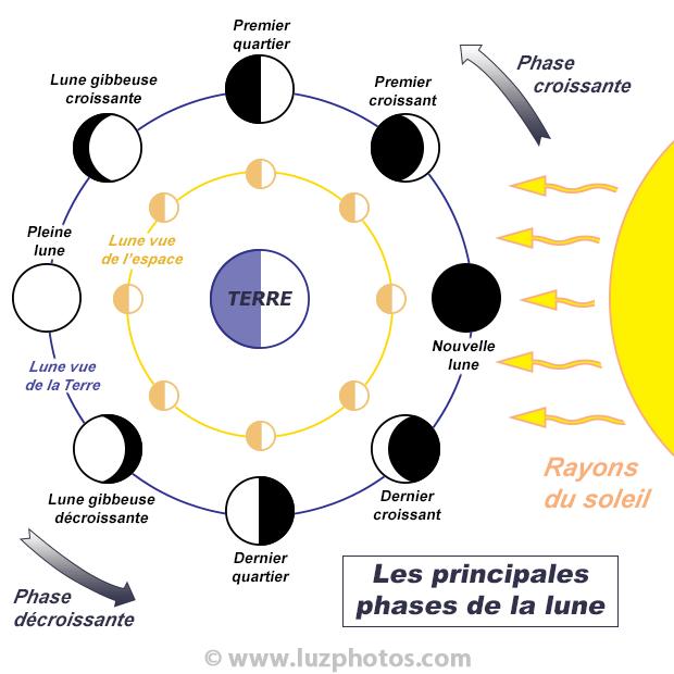 Quand photographier la lune : visuel des principales phases de la lune